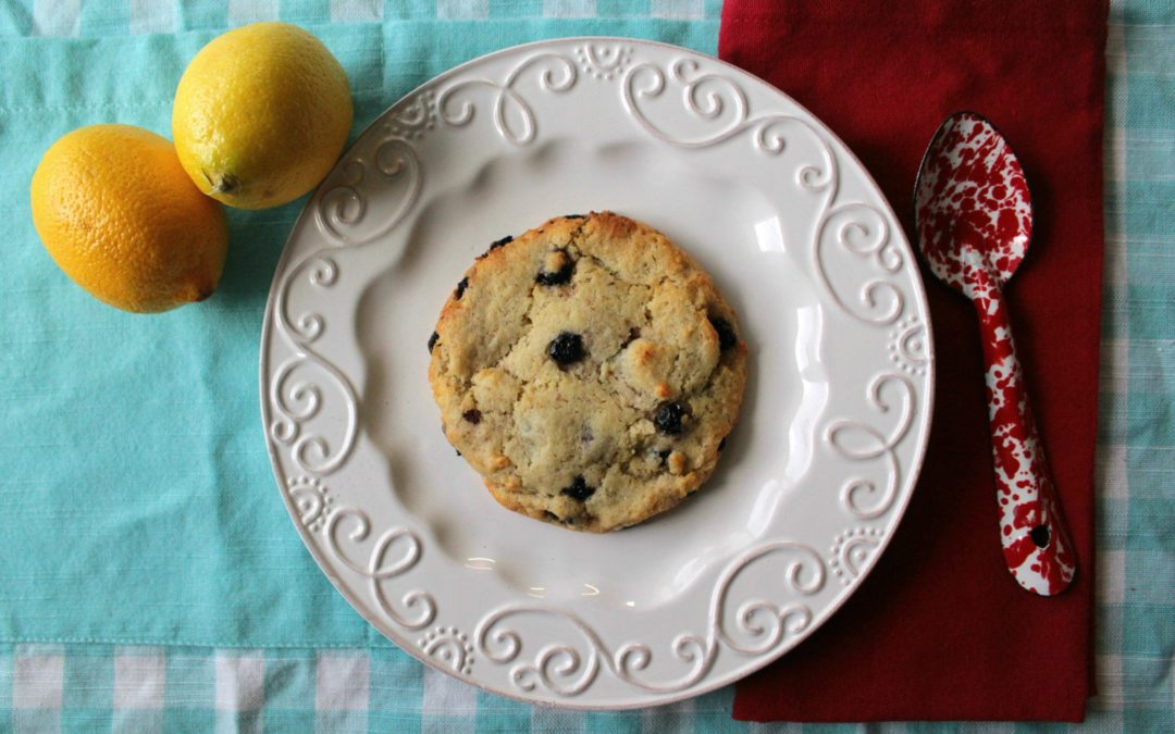 Gluten Free Vegan Lemon Blueberry